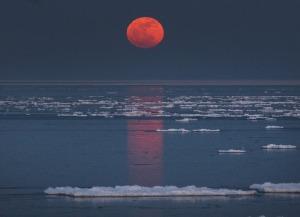 Moon-rise-Photo Bob King