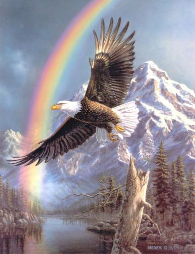 eagle and rainbow