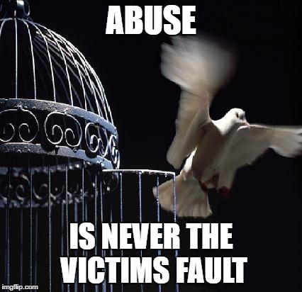 abuse never victim fault meme