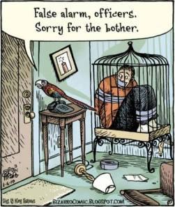 false alarm parrot