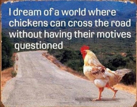 chicken dream motives