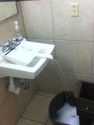 repurpose-dustpan-over-sink