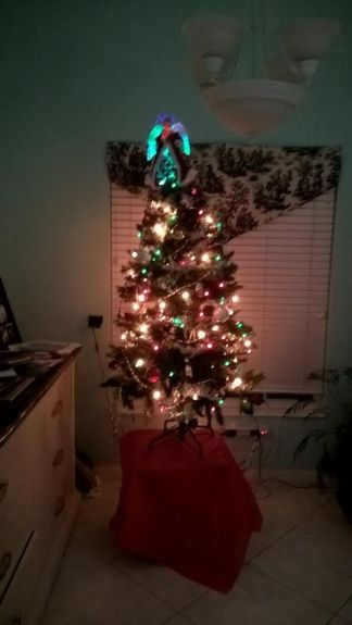 our-christmas-tree-2016