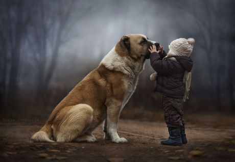 boy-with-big-dog-credit-elena-shumilova